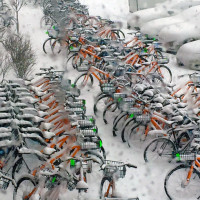 Winter Cycling Congress Affirms Bicycling Is More than Riding a Bike